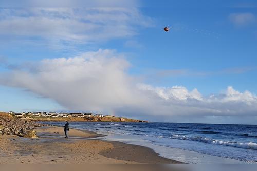 Kite flying on Reiss Beach